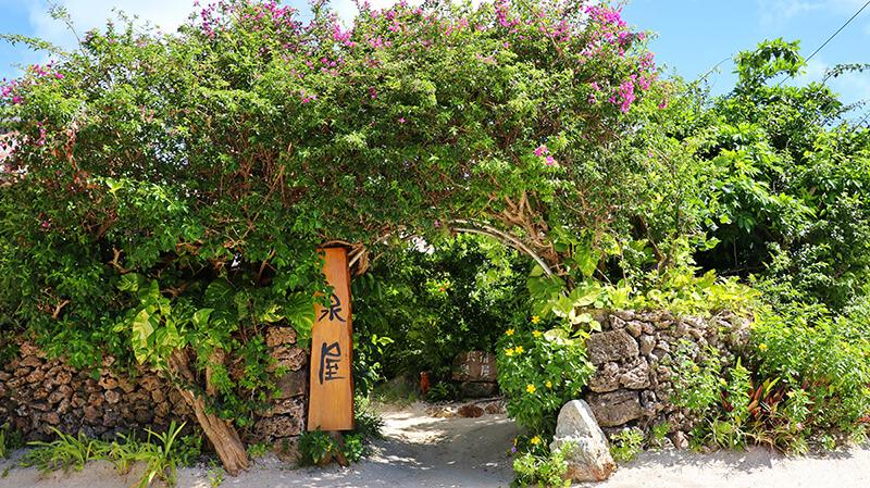 沖縄の八重山諸島、石垣島の離島、竹富島の民宿「泉屋」さん、観光、ツアー、水牛、星のや、民宿