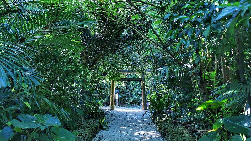 沖縄の八重山諸島、石垣島の離島、竹富島の御嶽、観光、ツアー、水牛、星のや、民宿
