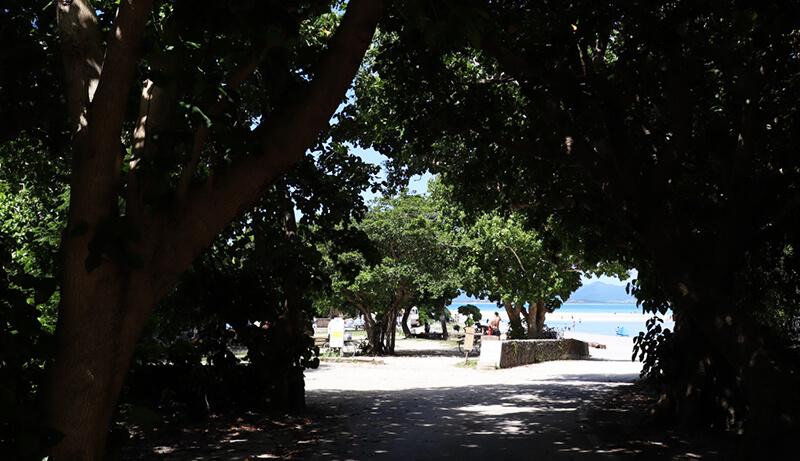 縄の八重山諸島、石垣島の離島、ビーチ、リゾート、観光、ツアー、水牛、星のや、民宿