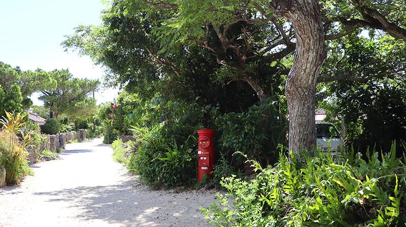 沖縄の八重山諸島、石垣島の離島、竹富島、観光、ツアー、水牛、星のや、民宿