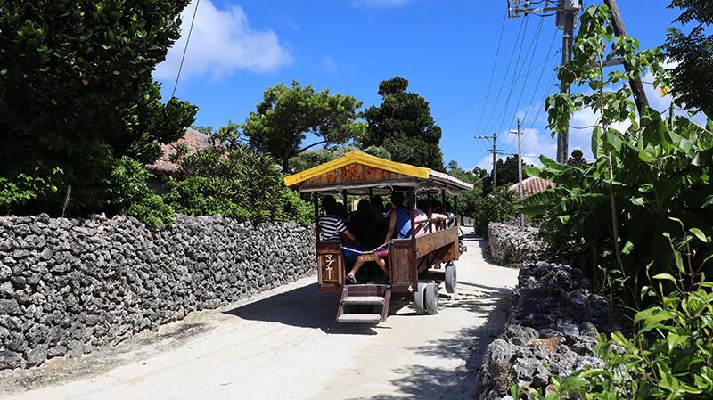 沖縄の八重山諸島、石垣島の離島、竹富島の観光牛車、観光、ツアー、水牛、星のや、民宿