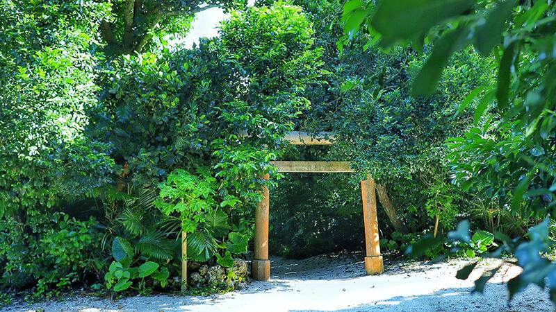 沖縄の八重山諸島、石垣島の離島、竹富島、御嶽、ウタキ、観光、ツアー、水牛、星のや、民宿