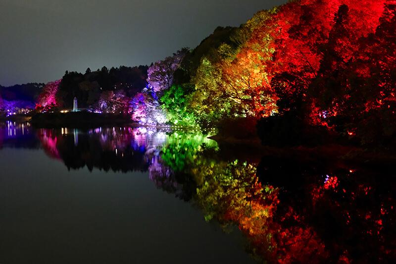 チームラボ 森と湖の光の祭 デジタルアート 飯能 メッツァビレッジ